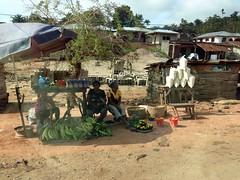 Women selling green plantains, palm oil and gari in roadside market, Igbara Oke, Ondo, Nigeria. #JujuFilms