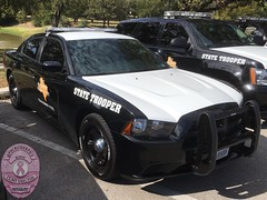 Texas Department of Public Safety (DPS) Highway Patrol