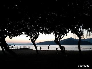CIRCLEG 等埋我先玩喎 回歸原點 繪圖 新都城 MCP 小熊 東港城 海洋公園 樹熊 袋鼠 貓CAFE 南灣 玩在棋中 BOARDGAME 香香雞 (32)