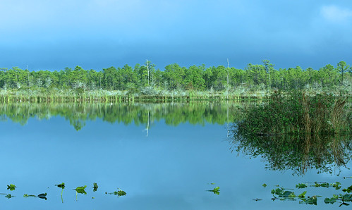 blue sky lake reflection water florida bluesky martincounty joneshungryland