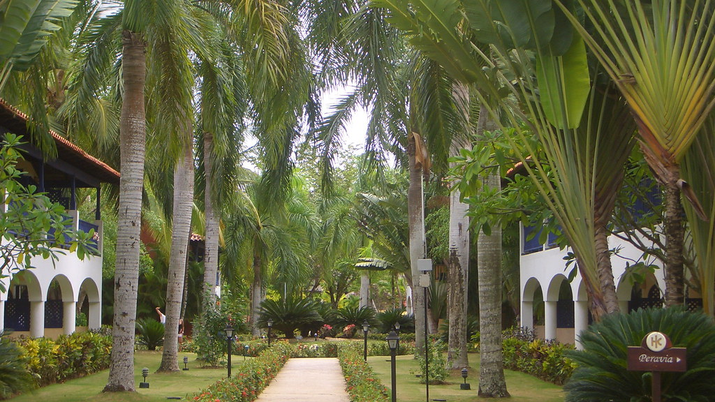 Dominican Republic - Relaxation For Body And Soul