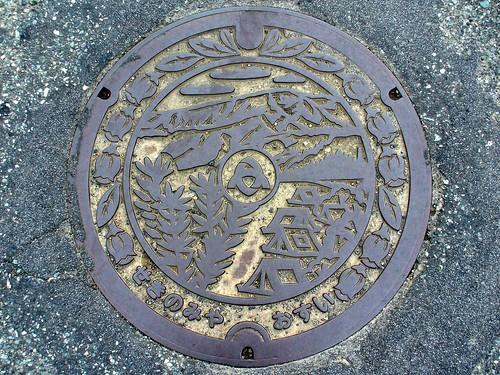 Sekinomiya Hyogo, manhole cover (兵庫県関宮町のマンホール)