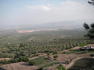 Vista de los cerros de Úbeda desde los miradores, Úbeda, Jaén
