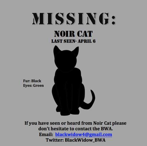 missing noir cat