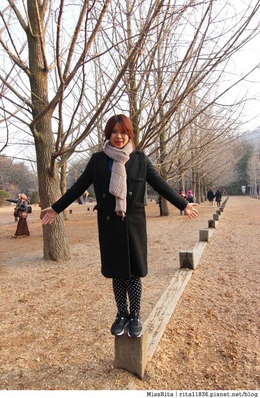 韓國 旅遊 韓國好玩 韓國 南怡島 韓劇景點 冬季戀歌場景 南怡島18