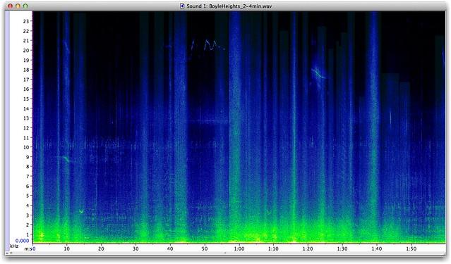 Sonogram of 2 minute sample