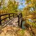 Bridge to Paradise by Glen Eldstrom