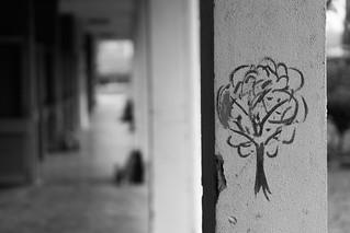 Pillar Tree