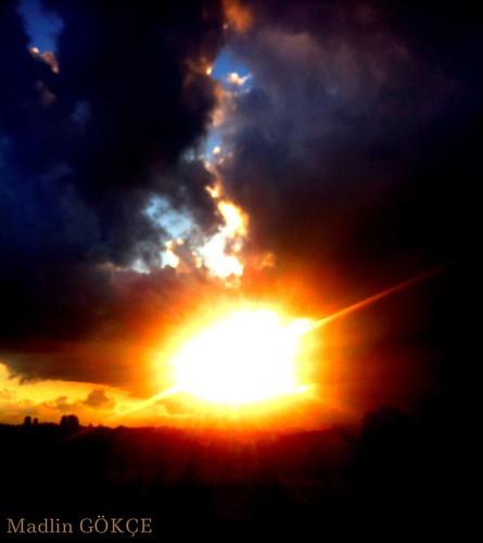 trees sunset brussels wild sky clouds darkness belgium ciel nuage extérieur arbre obscurité madlingökçe