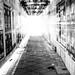 Dark is not the opposite of light; it's the absense of light