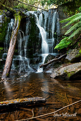Time stands still, Lilydale Falls