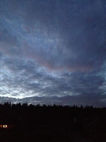 sunset lamington