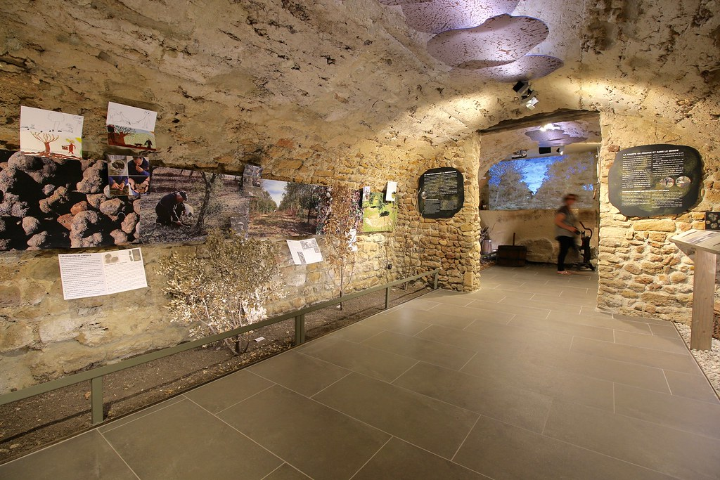 Richerenches Truffles and Wine Museum 2