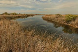 Freshwater Pond, Santa Rosa Island, Santa Rosa Sound, Santa Rosa Unit, Gulf Islands National Seashore, Escambia County, Florida 1