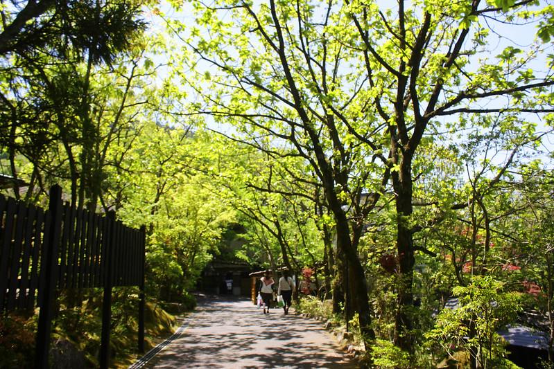 2014-05-07_03411_九州登山旅行.jpg