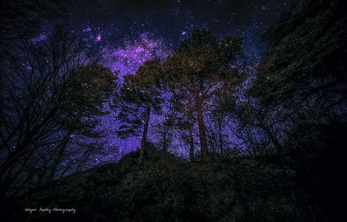 Star sky......