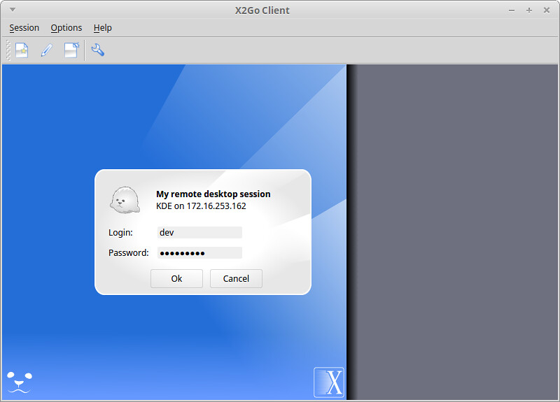 linux vps remote desktop