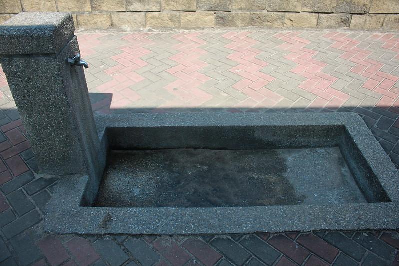 17度C台二線景點-石門-老梅綠石槽 (74)