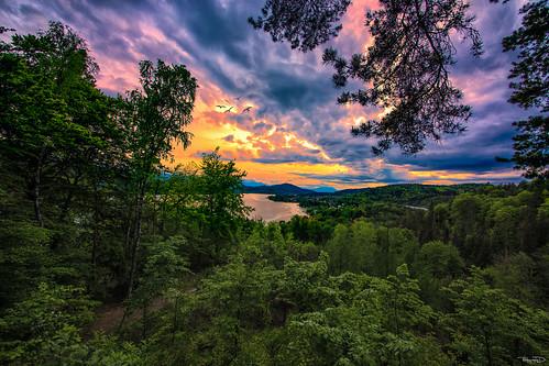 trees sunset sky panorama sun seascape silhouette landscape austria österreich europe sonnenuntergang kärnten carinthia sonne klagenfurt pyramidenkogel danielkölblinger