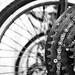 Bike hanger by Edna Winti
