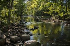 Pequannock River_4881