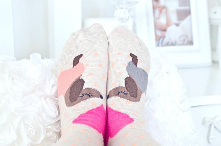 socksdachshund