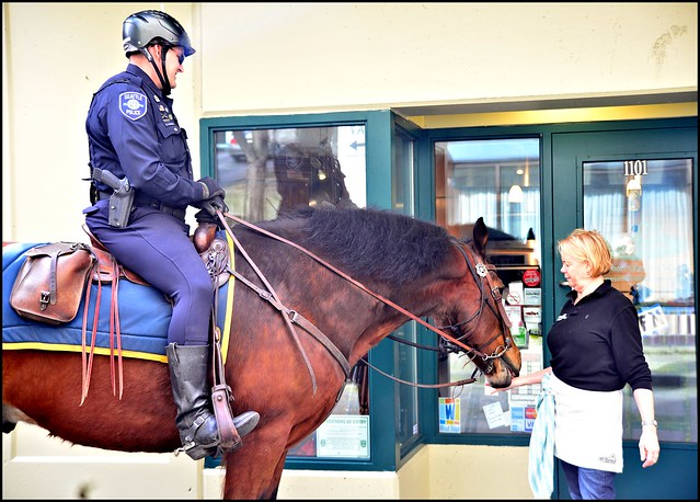 Treat for a police horse