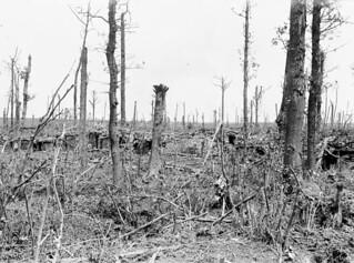 Dugouts in the Ypres Salient, July 1916 / Abris dans le saillant d'Ypres, en juillet 1916