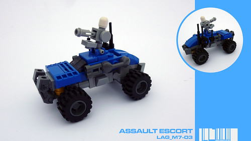 Assault Escort