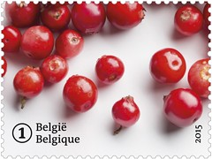 13 FRUITS OUBLIÉS timb1 canneberge