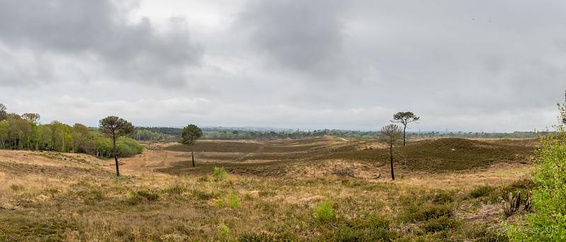 Upton Heath Panorama