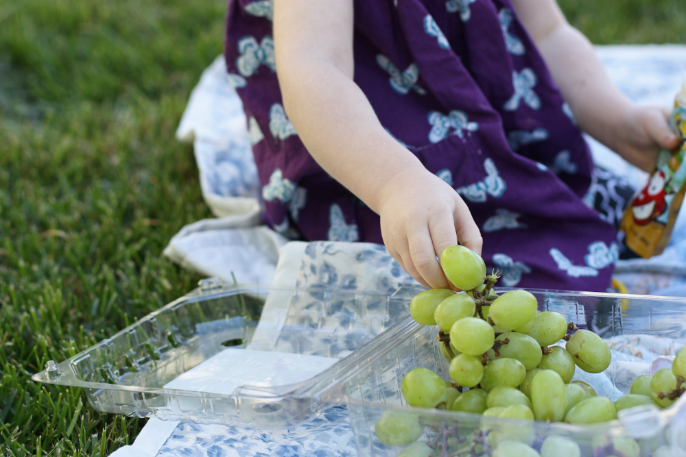 Useful tips for making picnics with little children easier and more fun