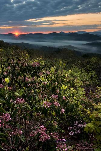 sunrisesunset mountainlaurel smokies townsend smokymountainnationalpark foothillsparkway