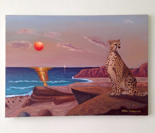 cheetah and sunset