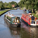 Trent and Mersey Canal by Neil Pulling