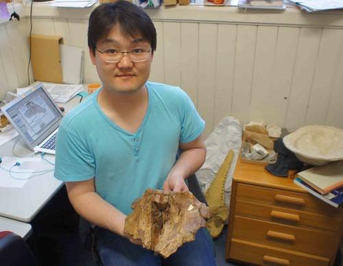實驗室的博士生Yoshihiro Tanaka(田中嘉寬)和他去年重新描述及命名的Otekaikea marplesi(暫譯為馬普奧塔克豚)。(圖片攝影:蔡政修)