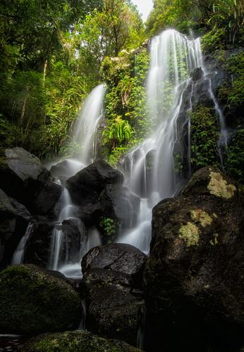 longexposure waterfall nikon rainforest df australia queensland oreillys lamingtonnationalpark goldcoasthinterland oreillysrainforestretreat chalahnfalls chalahn