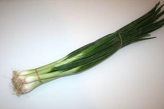 10 - Zutat Frühlingszwiebeln / Ingredient scallions