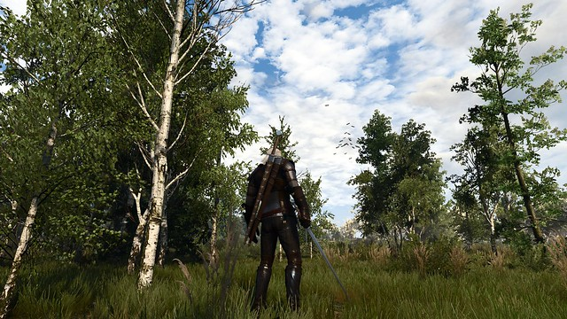 Witcher 3 ReShade/SFX CT Graphics | Forums - CD PROJEKT RED