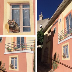 Cat in the window, or not? #trompeloeil #cat #nofilter #streetart