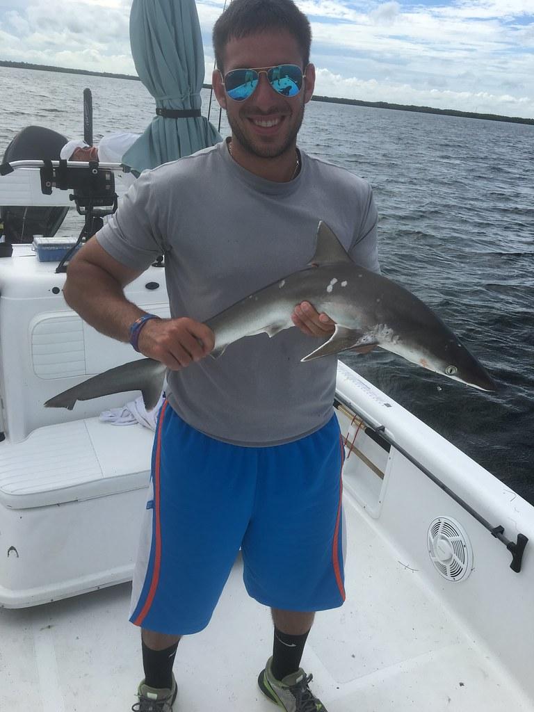 Tampa Bay Fish