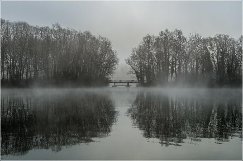 Fog Symmetry
