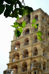Palace Tower
