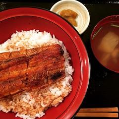 うなぎ丼 #lunch  #unagi #gennai #彦根 #滋賀 #うなぎ丼