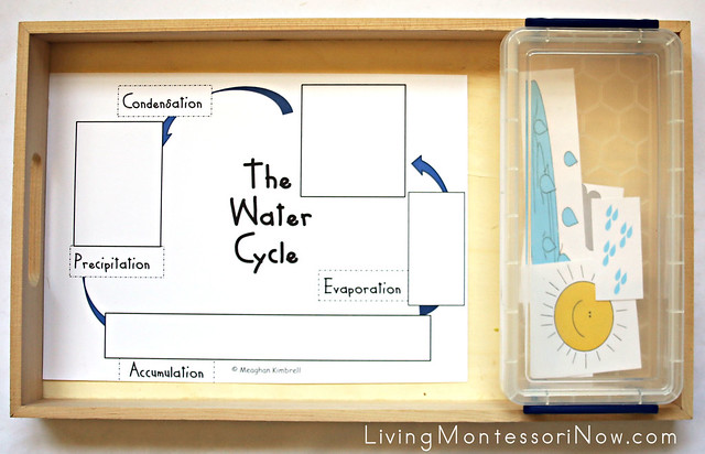 The Water Cycle Puzzle or Cut and Paste Activity
