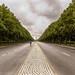 Tiergarten, Berlin by german_long