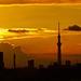 雲間にTSTーBetween clouds the TOKYO SkyTree