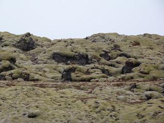 Magma y musgo del volcán Laki (Islandia)
