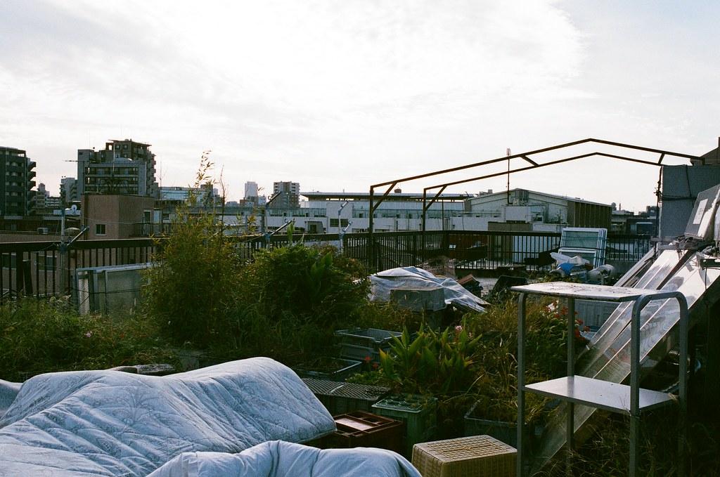 赤土小學校前 日暮里 Tokyo, Japan / AGFA VISTAPlus / Nikon FM2 一直都找不到很好的說明介紹那時候我住的地方。是一個非常特別的經歷。  我住在一個住在區裡的木工廠裡,他們用簡單的木頭隔間,非常簡陋,有點像是工寮。但對我來說,有床可以睡、有浴室可以洗澡就好了。是一個很特別的體驗。  重點是我還住了九天,很酷!  Nikon FM2 Nikon AI AF Nikkor 35mm F/2D AGFA VISTAPlus ISO400 0994-0013 2015/09/30 Photo by Toomore