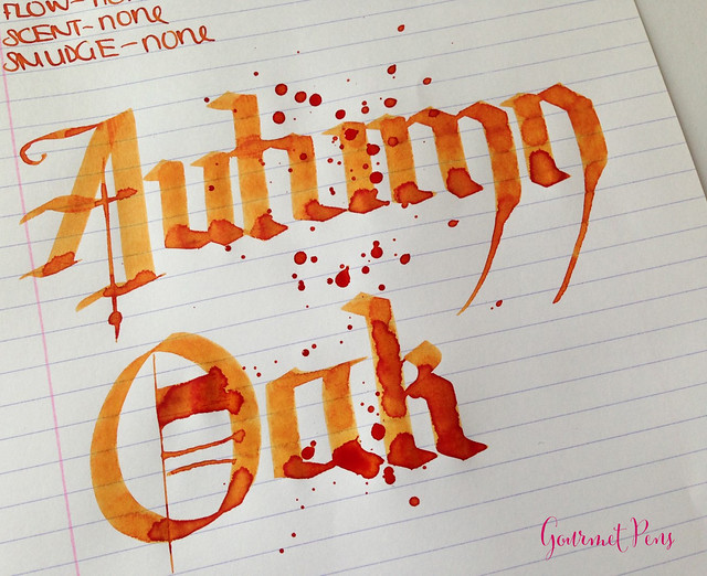 Ink Shot Review Diamine Autumn Oak @CouronneDuComte (7)